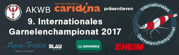 Чемпионат креветок в Ганновере
