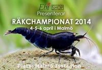 Креветочный чепионат в Швеции