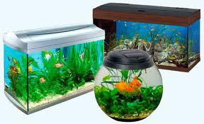 Выбор материала для аквариума