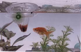Кормушка для рыбок