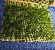 Приращивание мха к сетке