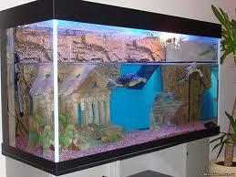 Задний фон в аквариуме