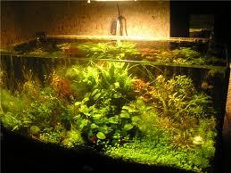 аквариумные светильники