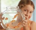 Ребенок и аквариум